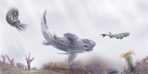Animales marinos Devónico