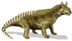 Estenmmenosuchus miralbis