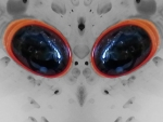 Lagrimas negras