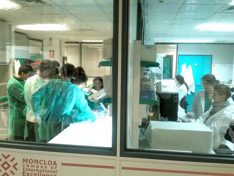 Alta participación en las actividades del Campus Moncloa dentro de la XI Semana de la Ciencia