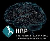 Proyecto de Cerebro Humano