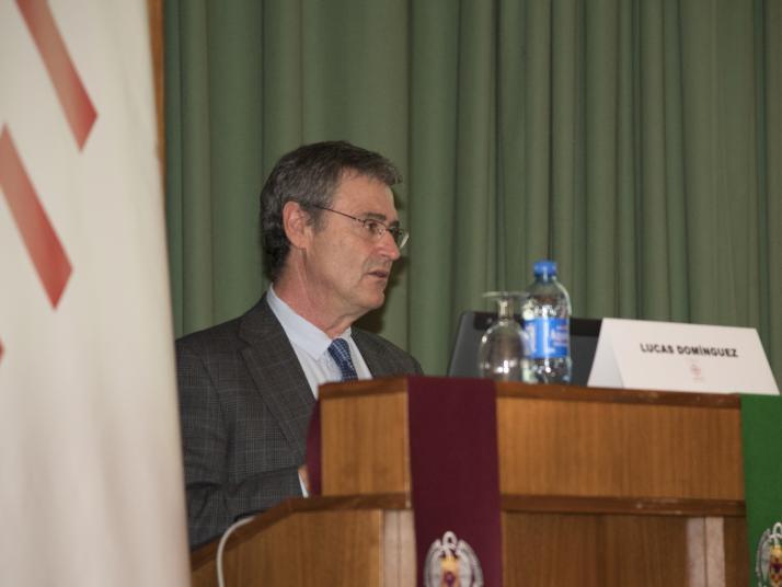 Campus de Excelencia Internacional (CEI) Campus Moncloa