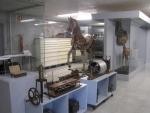 Museo Veterinario Complutense Fotografía 1