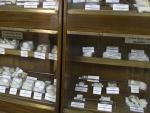 Museo de Anatomía Comparada de Vertebrados Fotografía 2