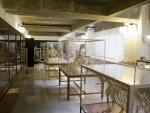 Museo de Anatomía Comparada de Vertebrados Fotografía 3