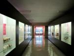 Museo de Antropología Médica y Forense, Paleopatología y Criminalística «Profesor Reverte Coma» Fotografía 3