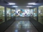Museo de Antropología Médica y Forense, Paleopatología y Criminalística «Profesor Reverte Coma» Fotografía 6