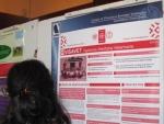 Sesión de posters del clúster de Agroalimentación y Salud