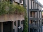 Colegio Mayor Siao Sin