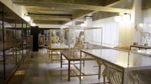 Museum of Comparative Anatomy of Vertebrates Photo 3