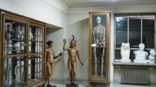 Museo de Anatomía «Javier Puerta» Fotografía 3