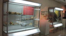 Museum of Medical and Forensic Anthropology, Paleopathology and Forensic «Profesor Reverte Coma» Photo 4